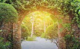 Der Garten der Seele